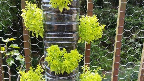 Come realizzare un giardino verticale con materiali da riciclo
