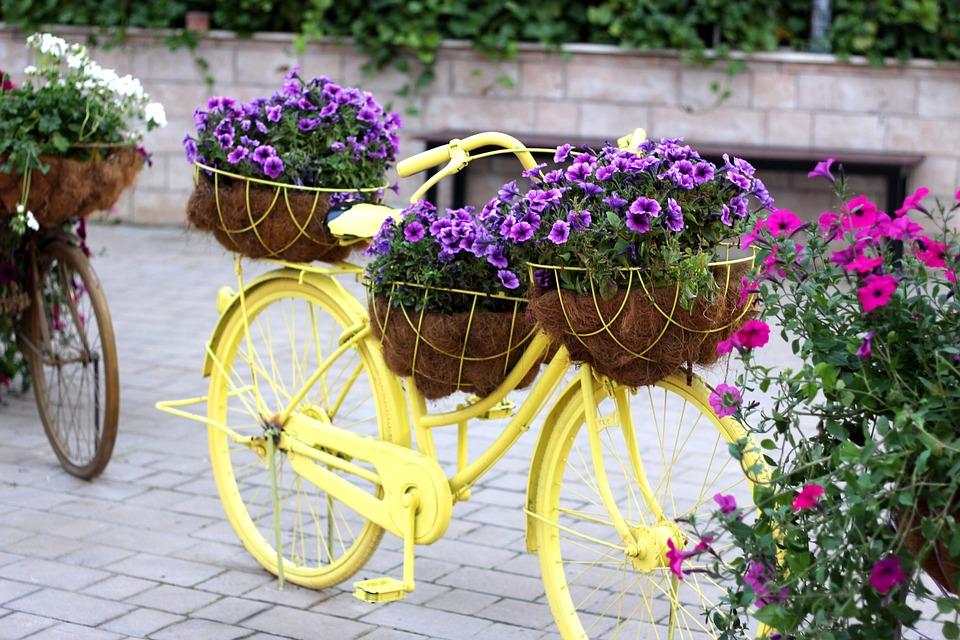 Creare il proprio giardino a costo zero con il riciclo creativo